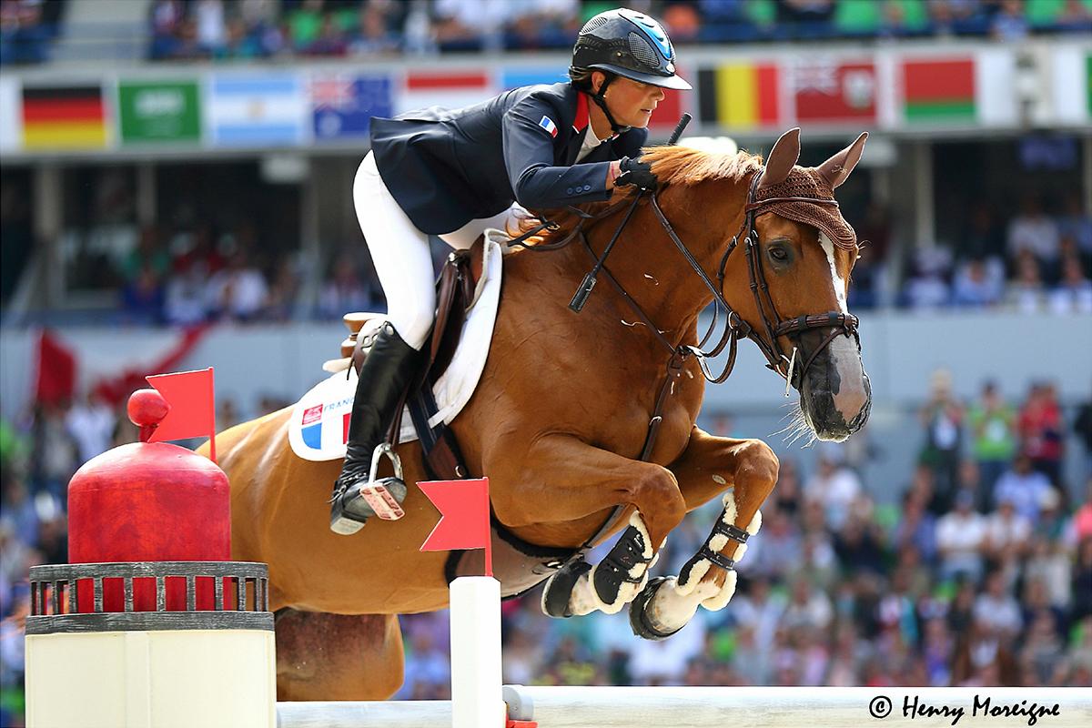 cheval sautant un obstacle avec un nose-net